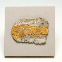 Fragment on Wood